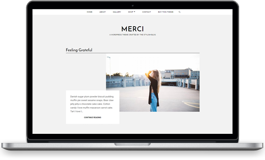 Merci WordPress theme screenshot